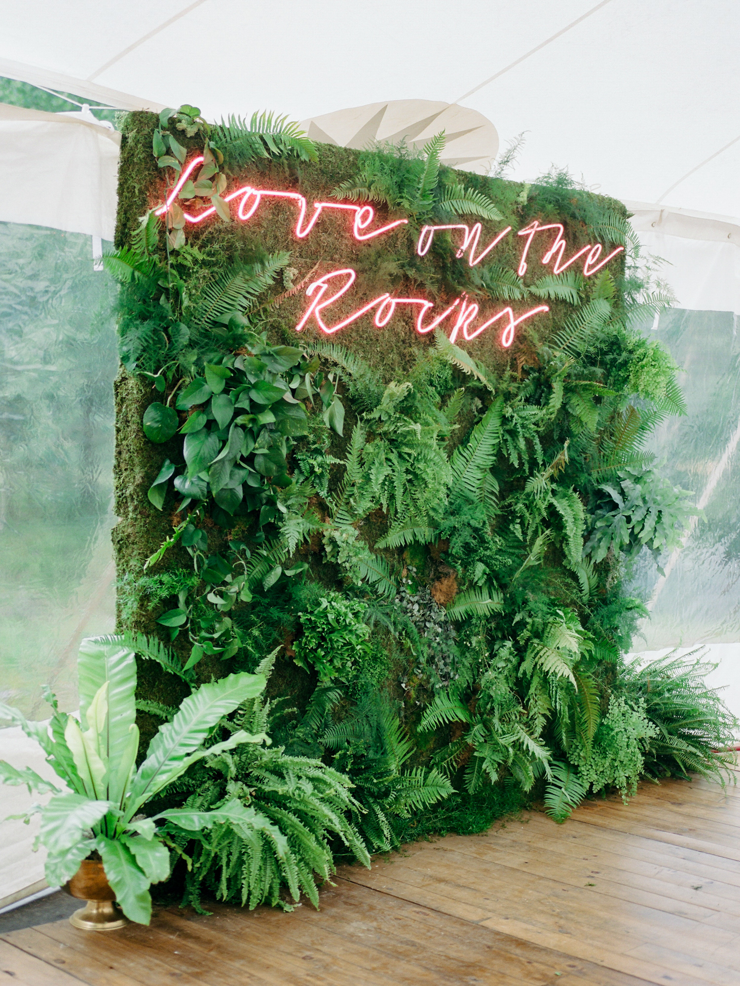Neon Glow Green greenery wall hedge plant leaf display for photoshoot aspen wedding photobooth